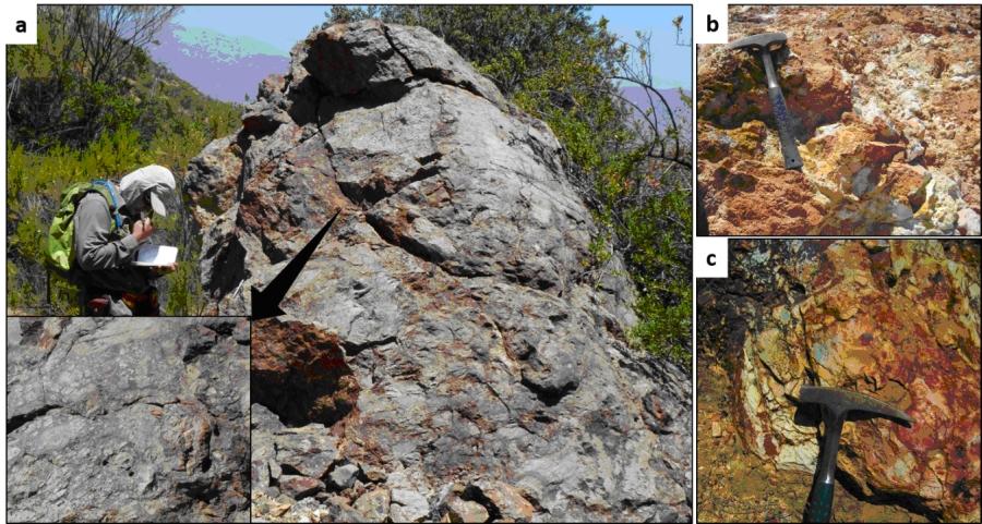 Figure 2. Lithocap outcrops photos. a. - Silicified breccias; b.-Quartz-sericite-clays alteration at lihocap; c.-Silica-clays alteration.