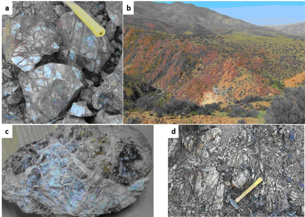 Figure 2. a. - Quartz-Oxides Stockwork, b.-Alteration view at Fortuna, c. - Strong supergene leaching with FeOx and alunite, d. - Quartz-Specularite-OxFe in outcrops.